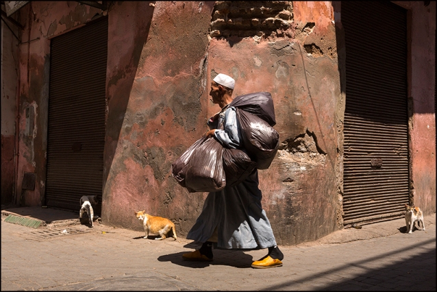 In a street of Marrakech. Morocco.